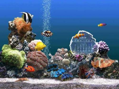 SereneScreen Marine Aquarium 3.0 - Descargar 3.0