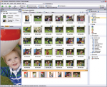 ACDSee Photo Manager 8.1